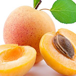 Apricot & Honey Fragrance Oil 14928