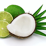 Coconut Lime Verbena Fragrance Oil 15253