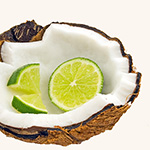 da Lime in da Coconut Fragrance Oil 15393