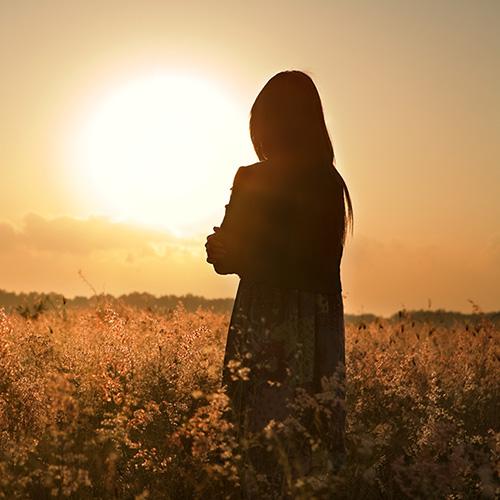 Sun Salutations Fragrance Oil 16950