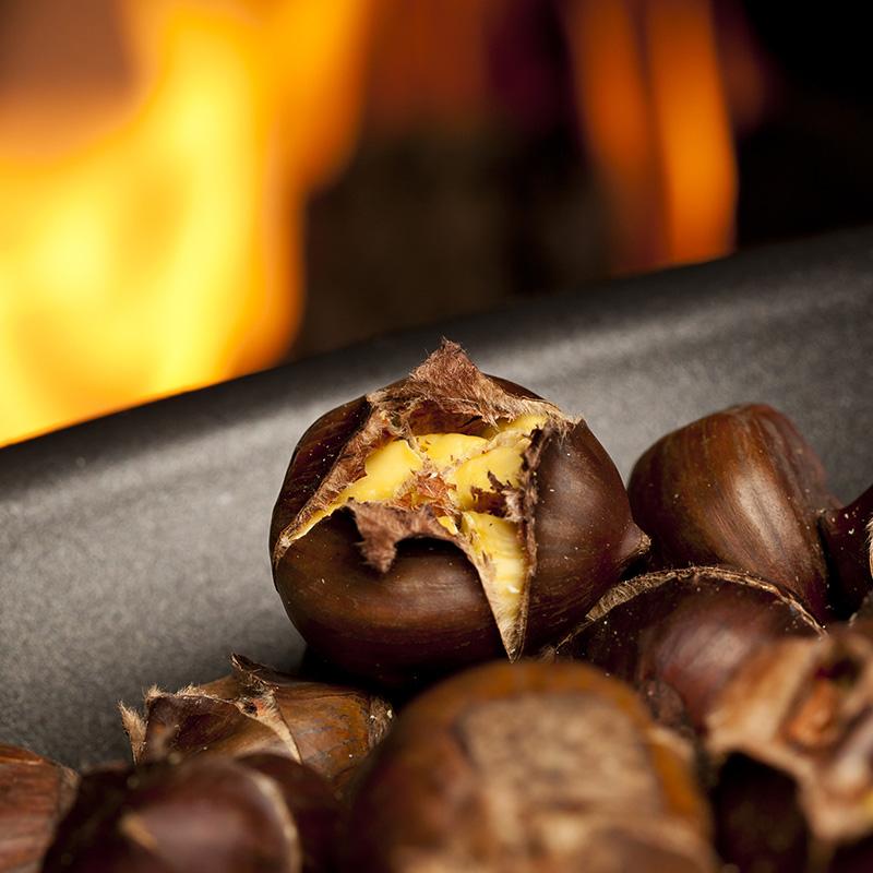 Woodland Chestnut Fragrance Oil 17176